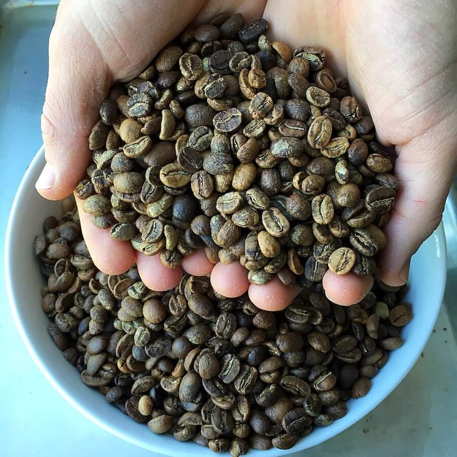 Home roasted coffee beans in hands
